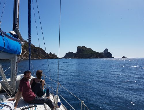 Vacaciones en velero a MallorcaDel 23/06/2018 al 29/06/2018